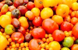 HarveysOrchardsTomatoes