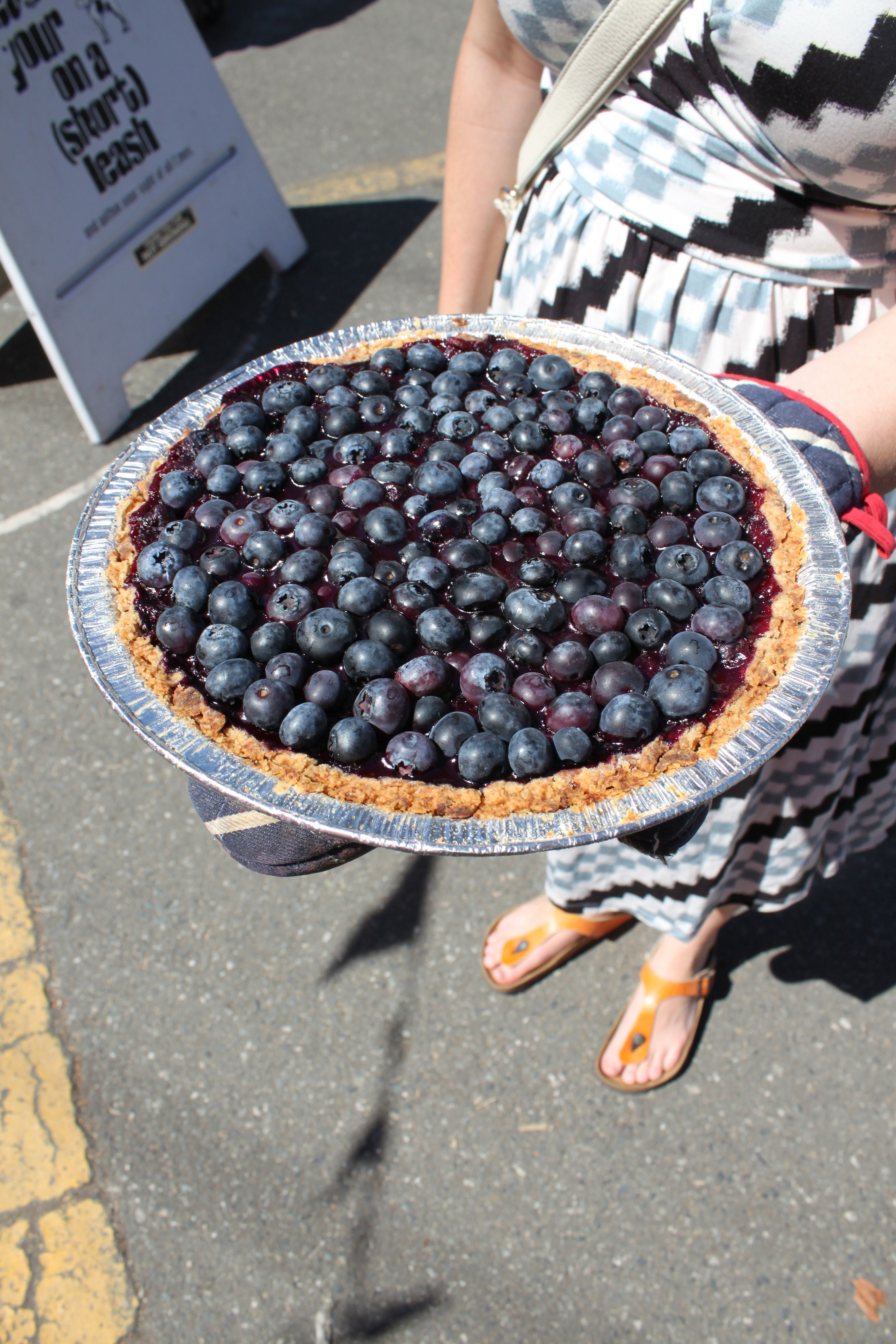 "Lauren van Oosten's ""Out of a Clear Blue Pie"" wins 2015 BC Berry Pie Bake Off"