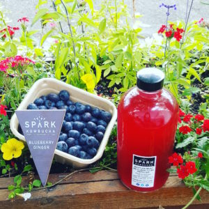 SPARK Blueberry ginger